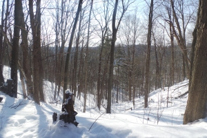 Noonan  woods Feb 15
