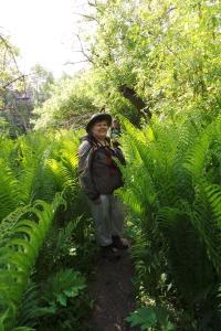 Jan being swallowed by the fern field...