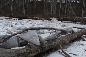 Ice jam 1___R dam w ice 20160128_110434 (6)_s