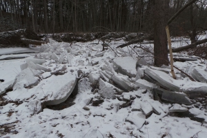 ice jam 4__R dam w ice 20160128_110434 (10)_s