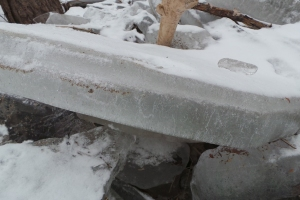 ice jam 5__R dam w ice 20160128_110434 (15)_s
