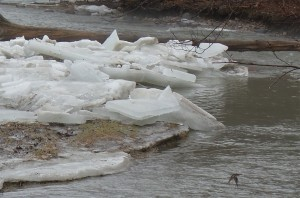 _Little Rouge River ice jam_s