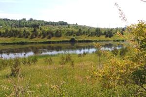 wetland pond 20160706_102226_s